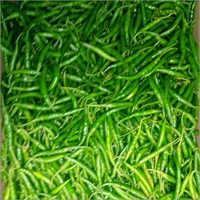 Green Finger Chilli
