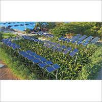 Agro Voltaic Farm