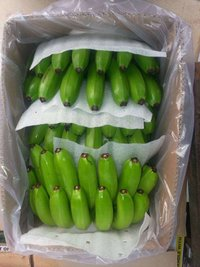 Inspected Cavendish Banana