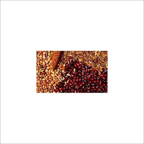 Crop Fertilizer Seed