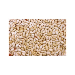 Vegetables Seeds And Pulses