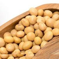 Mature Soybean Seeds