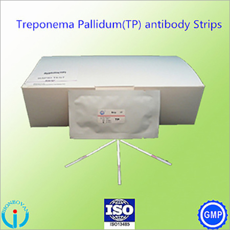Treponema Pallidum(TP) antibody Strip