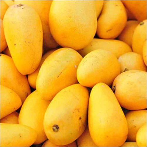Fresh Mango