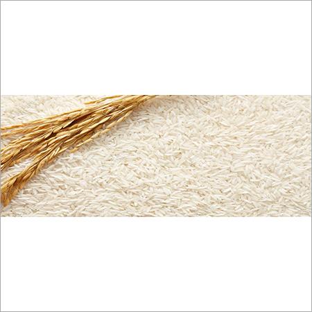 Indian Swarna Raw White Rice