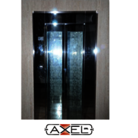 Home Lift Traction SS Mirror Auto Door