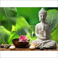 Meditation Courses Services