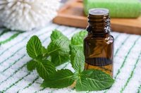 Mentha Arvensis  Essential Oil