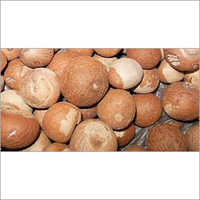 Whole Areca Nuts