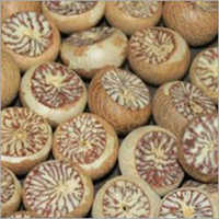 White Betel Nuts