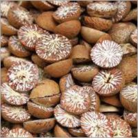 Betal Nuts