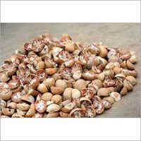 Whole Dried Areca Nut