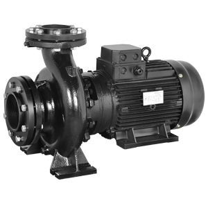 End Suction Monobloc Pumps