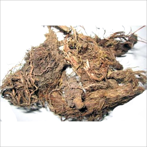 Dried Jatamansi Roots