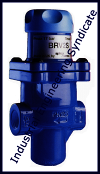 Forbes Marshall Bellow Valve
