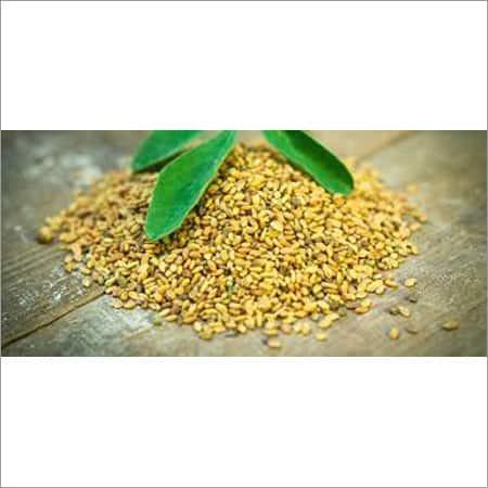 Methi-Seed