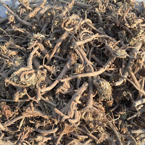 Akarkara Roots