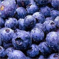凍結するブルーベリー