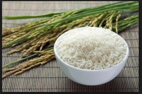 1509 Basmati Raw Rice