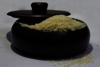 Sharbati Golden Rice