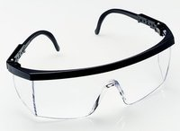 3M 1710 IN Protective Safety Spectacles