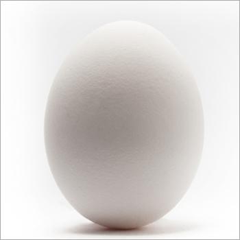 Orgainc Eggs