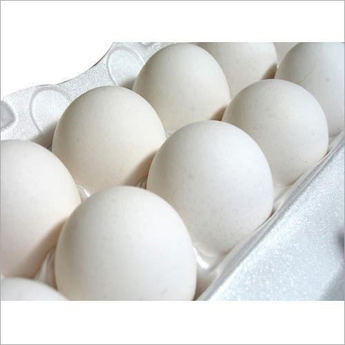 Pure White Eggs
