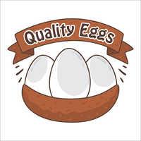 Quality Organic Eggs