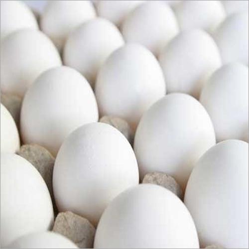 Pure Eggs