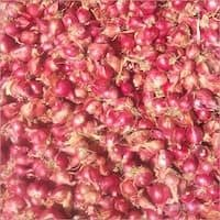 Natural Small Red Onion