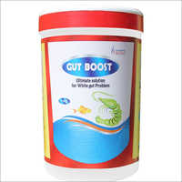 White Gut Boost Probiotic