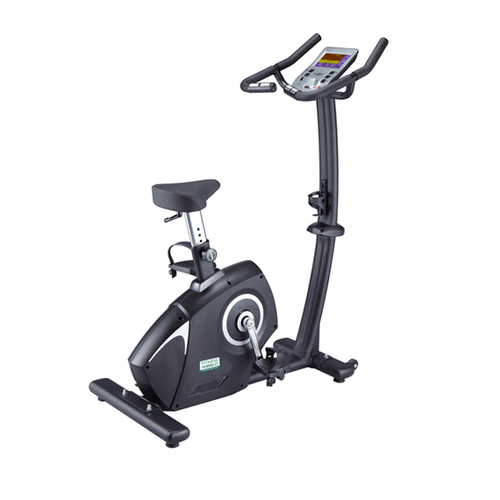 Hailey Upright Bike