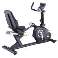Selina Recumbent Bike