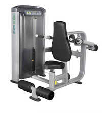 7606 Triceps Exercise Machine