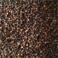 White Sandalwood Seed