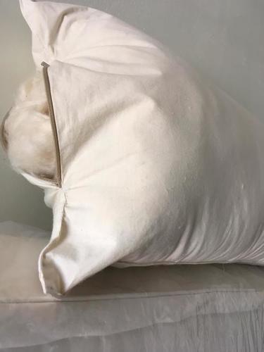 Organic Kapok Body Pillow