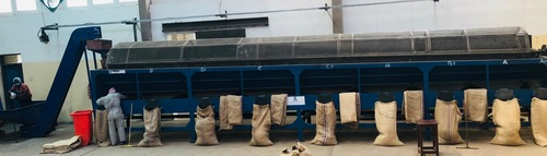 Raw cashew size sorting machine