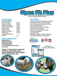 Goat & Sheep Electrolyte Supplement (Gluco Fit Plus)