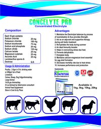 Cattle Electrolyte Supplement (Concelyte Pro)
