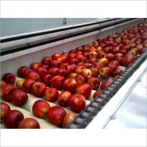 Automatic Apple Grading Machines