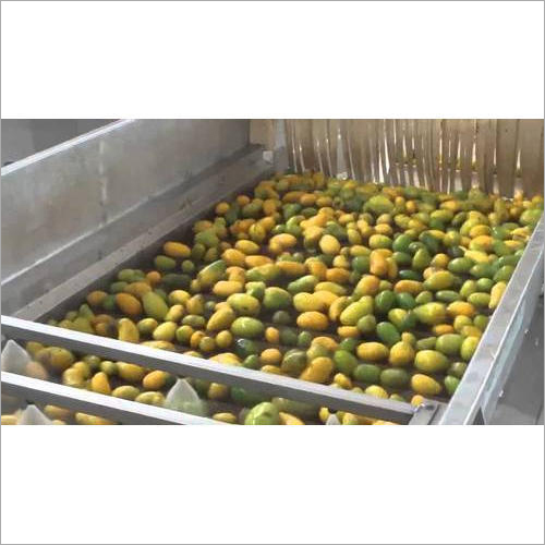 Automatic Mango Grading Machine