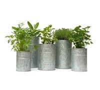 Galvanised Metal Planters Set of 5