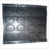 Thermoformed Plastic Tray