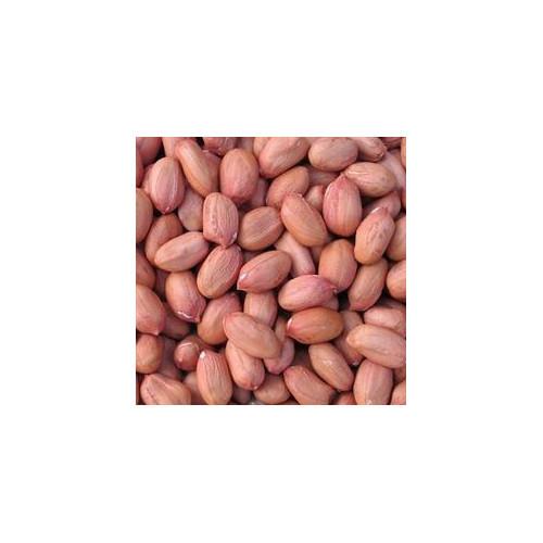 Pure Raw Peanut Kernel