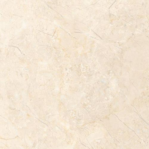 Porcelain Tiles 800X800 mm