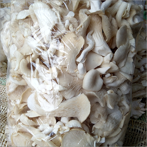 Organic Dried Mushrooms