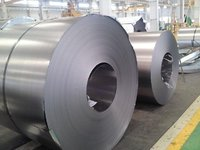 310 Stainless Steel Coils
