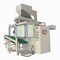 Multi Track Pouch Packaging Machine for Granules