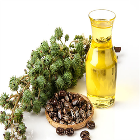 Organic Cold Pressed Castor Oil
