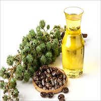 Organic Cold Pressed Castor Oil